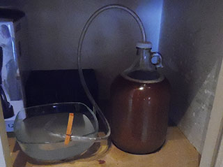 everyday ipa fermentation