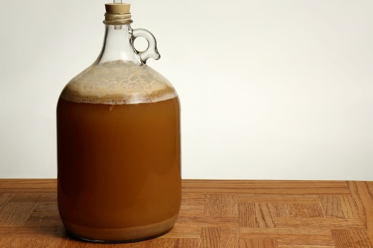 brewing glass carboy