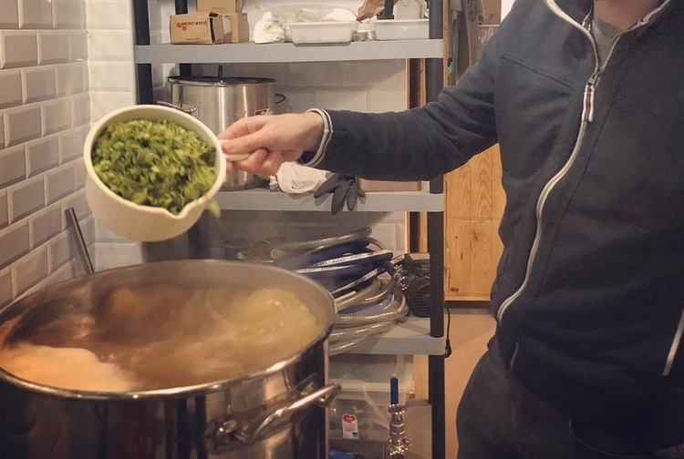 hops addition boil