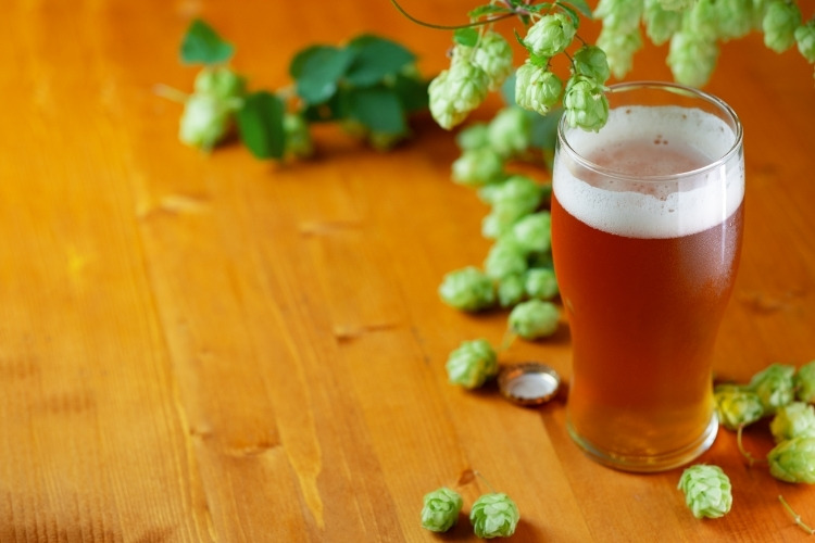 most hoppy beers